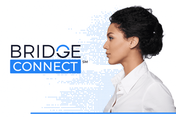 bridge connect