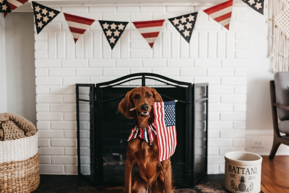 The Fourth of July marketing guide